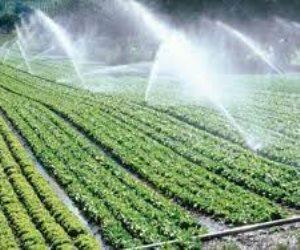 تعرف على جهود الدولة بمشروعات الزراعة الكبرى.. مجتمعات زراعية وتنموية جديدة
