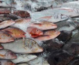 أسعار الأسماك اليوم.. ارتفاع البلطي بسوق العبور
