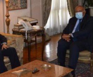 شكرى يؤكد لوزير خارجية مالى حرص مصر على نشر المفاهيم الصحيحة للإسلام