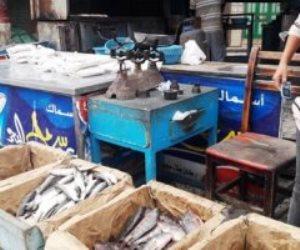 الحكومة تنفى انتشار أسماك فاسدة وغير صالحة للاستهلاك بالأسواق