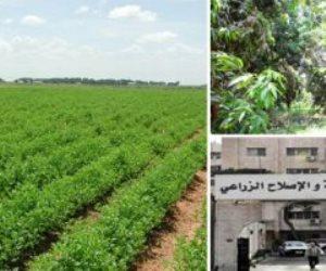 الزراعة: الدلتا الجديدة تنمية زاحفة لظهير صحراوى يضم 5 محافظات