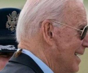 تفاصيل مهاجمة حشرة السيكادا العملاقة للرئيس الأمريكي وتعطيل رحلته لبريطانيا