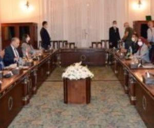 وزير الخارجية: هناك دعم عربي لمصر في موقفها بقضية سد النهضة