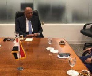 شكرى يلتقى مندوب تونس لدى الأمم المتحدة للإعداد لجلسة مجلس الأمن حول سد النهضة