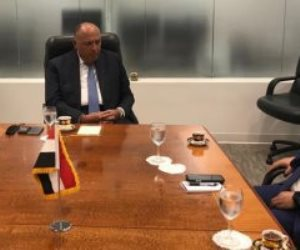 وزير الخارجية يثمن الدعم التونسى لمصر فى قضية سد النهضة الإثيوبى