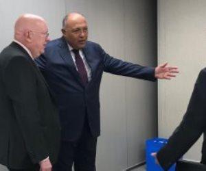 وزير الخارجية يؤكد لمندوبي روسيا والصين بمجلس الأمن ضرورة التوصل لاتفاق حول سد النهضة