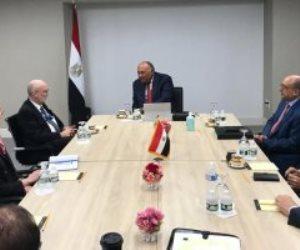 سامح شكرى يعرض موقف مصر من قضية سد النهضة على مندوب أستونيا لدى الأمم المتحدة