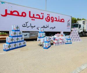 تنفيذا لتوجيهات الرئيس السيسي.. صندوق تحيا مصر يطلق قافلة لدعم الأسر الأولى بالرعاية في قنا استعدادا للعيد