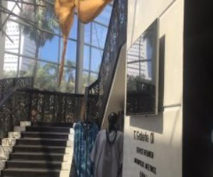 شاهد.. مقر إقامة النادي الأهلي في المغرب استعدادا للنهائي (فيديو)