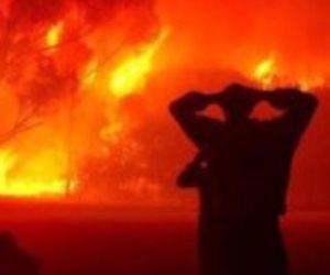 الحرائق تهدد الجزائر.. والحكومة تتوعد المتورطين