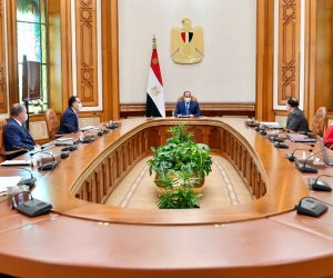 الرئيس يوجه بتعزيز منظومة دعم العاملين بمجال الفن باعتبارهم قوة مصر الناعمة ومنارتها الابداعية