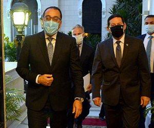 نائب الرئيس البرازيلى : القاهرة شريك هام فى أفريقيا والعالم العربى.. صور