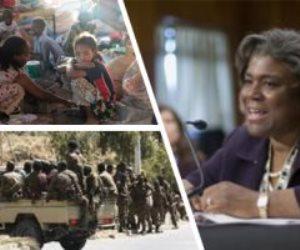 إثيوبيا تحت مجهر مجلس الأمن.. الأزمات تلاحق حكومة أديس أبابا ومجلس الأمن يدينها