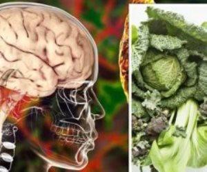 """دراسة تؤكد: """"النظام الغذائي""""مايند"""" يقلل خطر الإصابة بالزهايمر"""