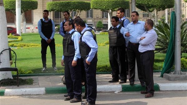 فالكون: لا علاقة لنا بتسميم كلاب جامعة القاهرة
