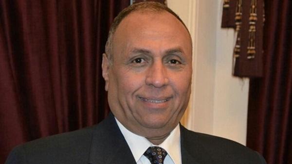 نائب معلقا على بيان الرئاسة: مصر الوحيدة التي تدعم قضية فلسطين
